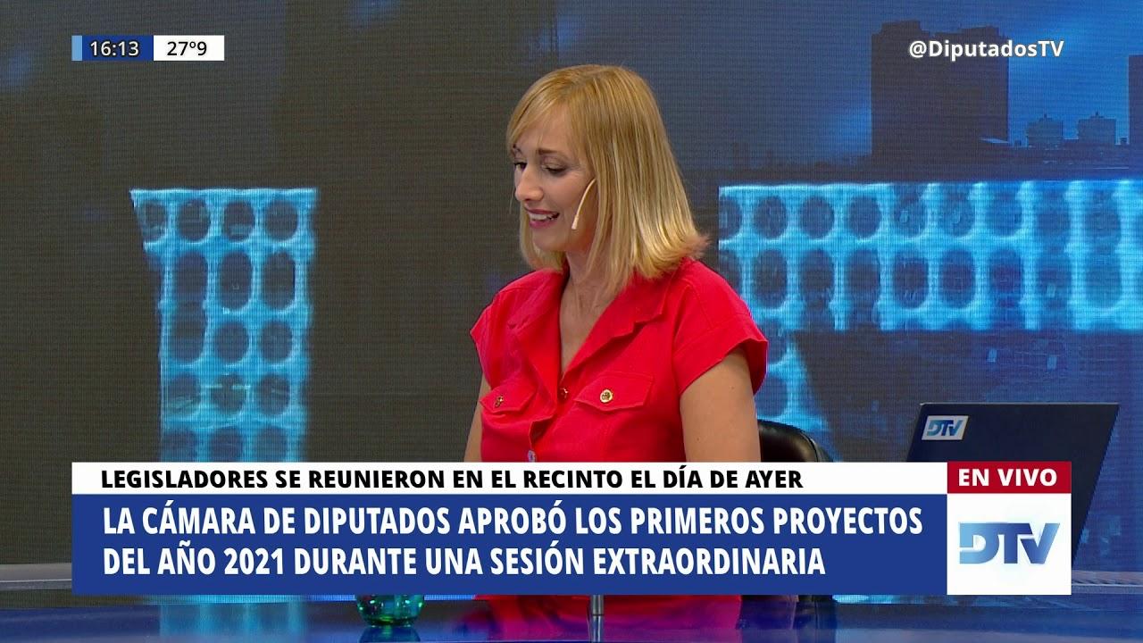 DTV - El Periodismo en el Congreso con Karin Cohen - Programa 12/02/2021 -