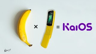 Nokia 8110 4G Review 8 Month Later !