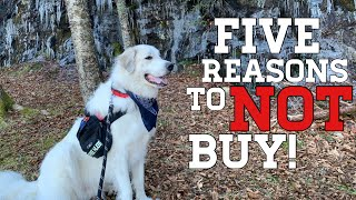 5 Reasons NOT to buy a Great Pyrenees