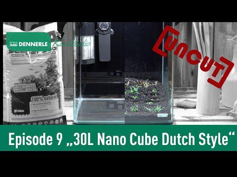 [UNCUT] Einrichten eines 30 L Dutch Style Nano Cube Aquarium | Kochstudio Episode 9 | DENNERLE