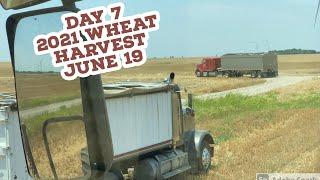 Day 7 - 2021 Wheat Harvest / June  19