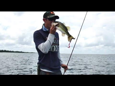 How To Catch Post-Spawn Bass In Texas (+Surrounding States)