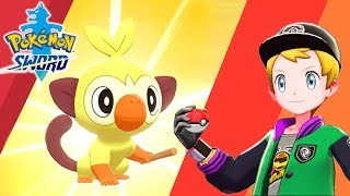 SHINY GROOKEY HUNTING! The Epic Quest for All 3 Shiny Starters Continues in Pokemon Sword!