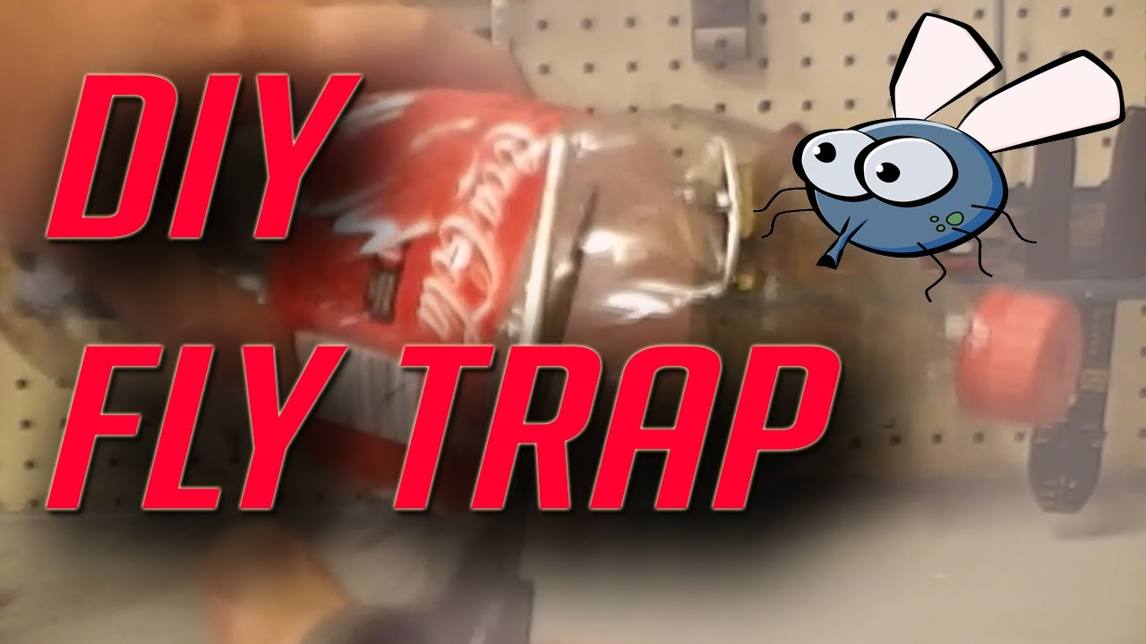 how to make a cheap homemade fly trap with a two liter youtube. Black Bedroom Furniture Sets. Home Design Ideas