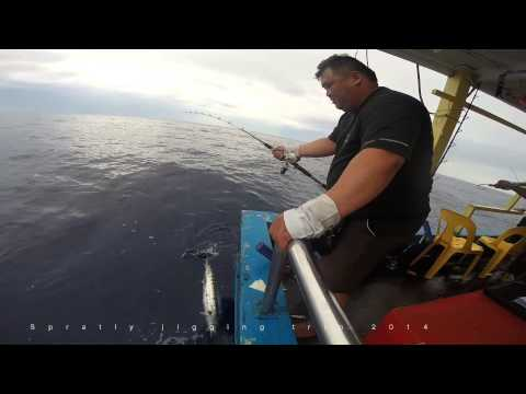 Spratly 2014 jigging fishing