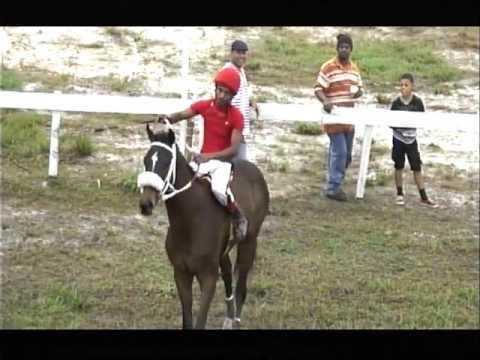 HORSE RACES SAN FELIPE JULY 2016 And CASTLETON EASTER MONDAY 2016