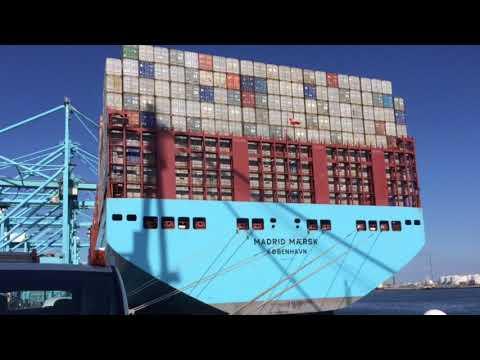 Breakbulk loading on Madrid Maersk at APM Terminals Rotterdam