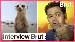 Interview Brut Jamel Debbouze, la voix de Timon dans Le Roi Lion