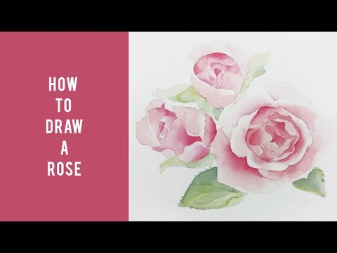How to Draw a Rose    Easy Tutorials for Beginners   Drawing Roses