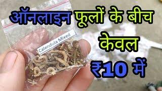 अब ऑनलाइन बीज (online seeds) इतना सस्ता कि हर कोई खरीदेगा और लगाएगा