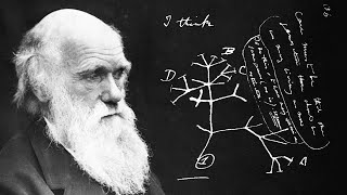 Le mystère des carnets de Darwin ....