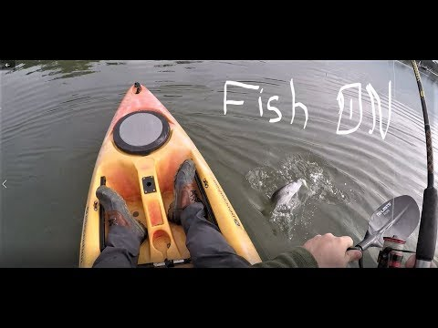 Kayak Fishing Charleston Sc , Shem Creek And Secret Spot