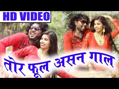 मनोज आडिल-Cg Song-Tor Ful Asan Gal La Chuman De -Manoj Aadil-New Chhattisgarhi Video Geet Video 2018