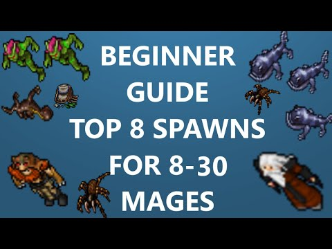 Tibia[where To Profit & Hunt ED/MS] BEGINNER MAGE GUIDE - TOP 8 SPAWNS [8 - 30 LVL] [2019]
