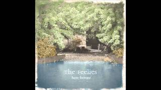 Watch Feelies Morning Comes video