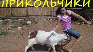 НАРЕЗКА 2017 ПРИКОЛЫ! Улетное Видео 2017! Ржачь,приколы!