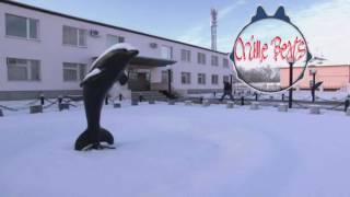 Гио Пика-Фантан с Черным Дельфином ✵ ♛