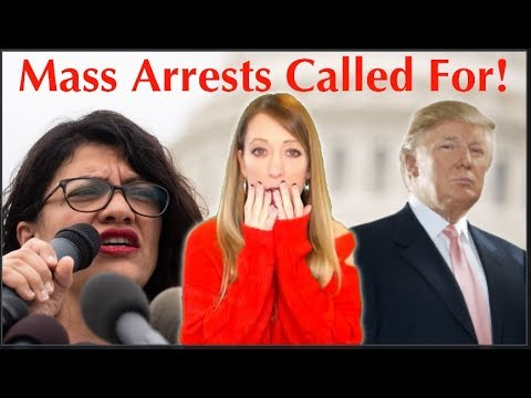 rashida-tlaib-calls-for-mass-political-arrests,-democrats-comply-by-immediately-doing-this…