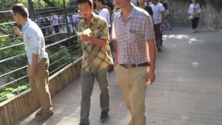 Beijing Zoo - Beijing - China (1)