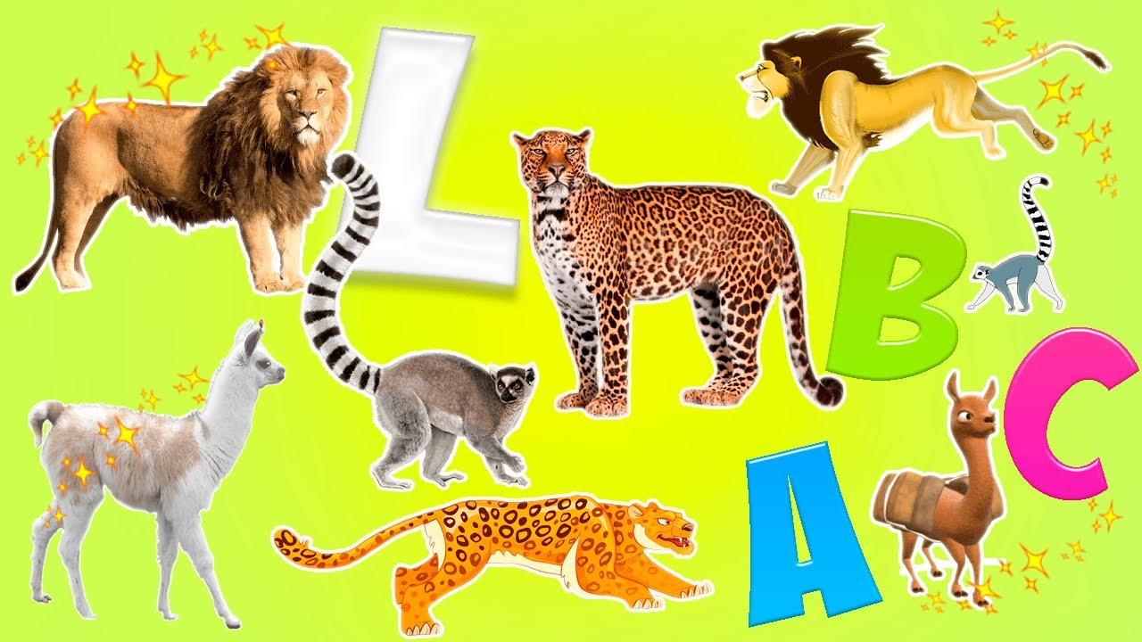Image of: Zoo Learn Alphabet With Cartoon Real Animals For Children Abc Wild Animals Names And Sounds My Modern Met Learn Alphabet With Cartoon Real Animals For Children Abc Wild