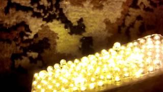 видео желтые светодиоды на 12 вольт