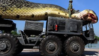 10 Most Giant Snakes Explained