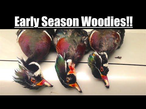 Duck Hunting 2018 - Beaver Pond Wood Ducks