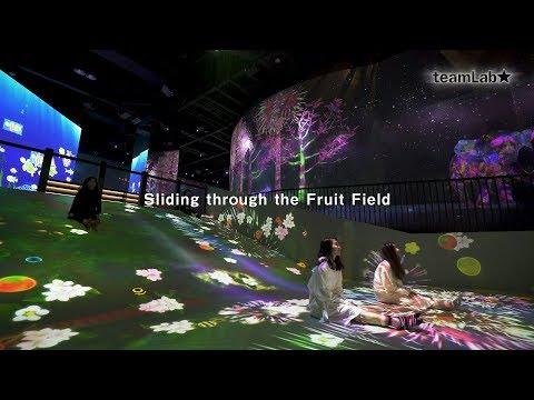 Sliding through the Fruit Field