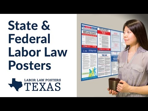 Texas State and Federal Labor Law Poster Video