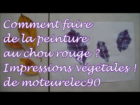 comment faire de la peinture naturelle au chou rouge et impression v g tale tutoriel youtube. Black Bedroom Furniture Sets. Home Design Ideas