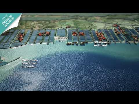 Building with Nature Indonesia: Baseline scenario coastal erosion in Demak, Northern Java Mp3