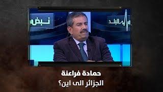 حمادة فراعنة  - الجزائر الى اين؟