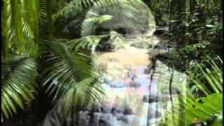 Video Anadaloke By Indranil Sen.flv download MP3, 3GP, MP4, WEBM, AVI, FLV Juli 2018