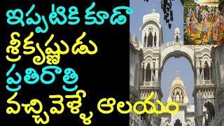 krishna temple nidhivan mystery | most mysterious temple in brindavan mystery | sree krishna