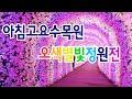 김국진♥강수지, 괌 비경 찾아 아침 데이트…'온통 핑크빛' @불타는 청춘 86회 20161213 ...