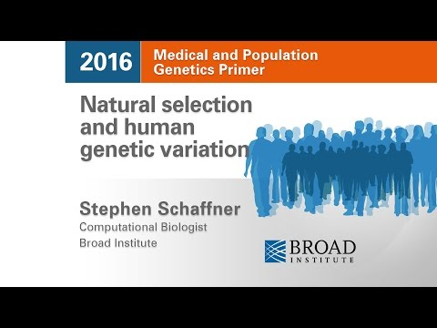 MPG Primer: Natural selection & human genetic variation (2016)