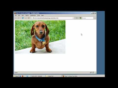 How to Insert an Image in a Webpage (HTML / XHTML)