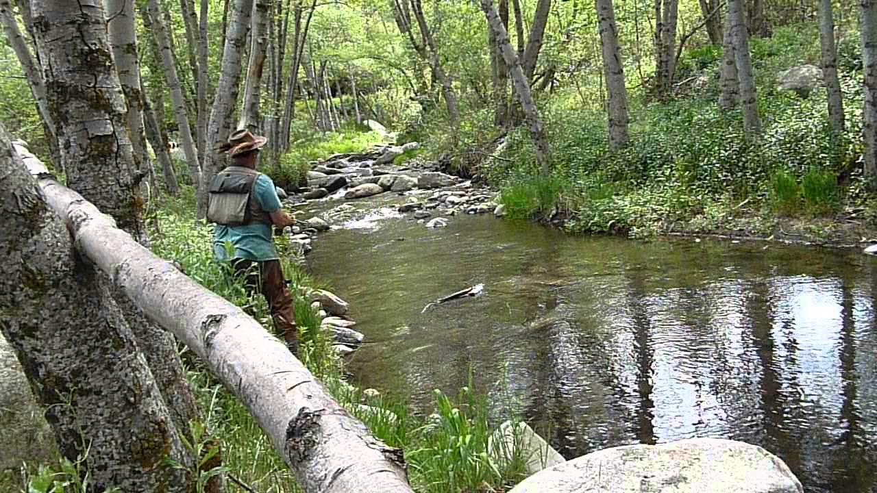 Fly fishing on the santa ana river angelus oaks ca youtube for Santa ana river lakes fishing