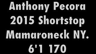 Anthony Pecora 15' Baseball Recruiting Video