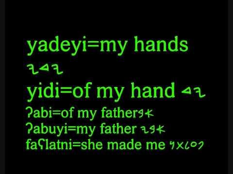 canaanite-phoenician language: grammar: possessive suffixes