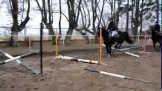 trening Stajnia Pałac Runowo
