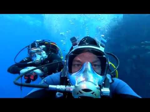 Diving Safari in