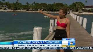 Ginger Zee - bikini top - Good Morning America March 7, 2014