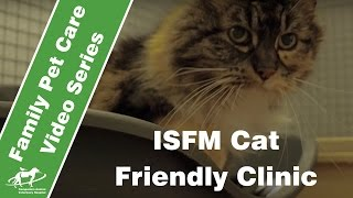 We Are a Cat Friendly Clinic- Companion Animal Vets
