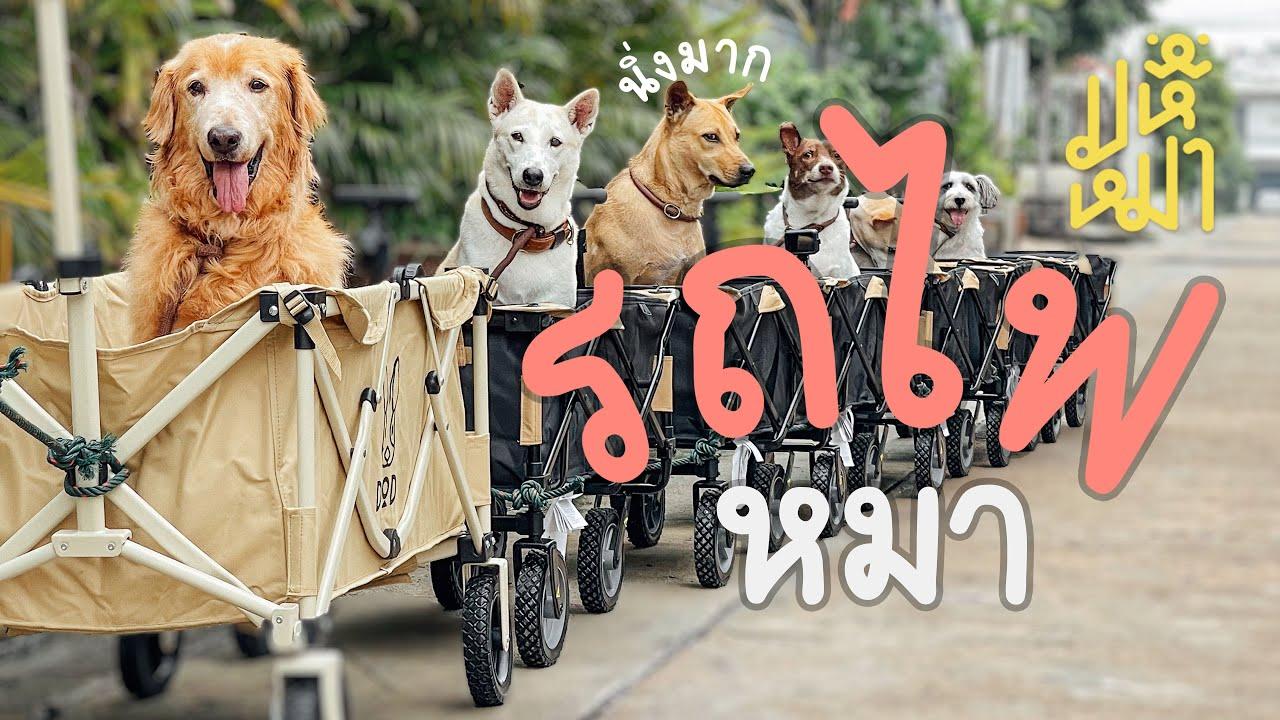(EN) สร้างรถไฟให้หมานั่ง - มหึหมา EP117