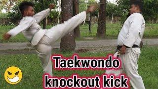 Taekwondo knockout kick | Kick Training At Home