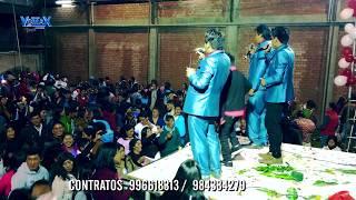 PUMITA CAZADOR  ▷ VIZCACHITA  EN HUANCAYO thumbnail