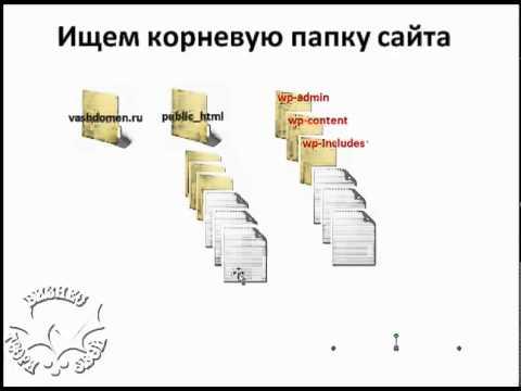 Корневую директорию wordpress