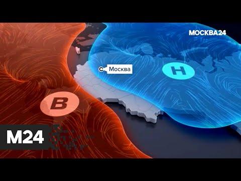 """""""Погода"""": небольшие осадки ожидаются в Москве - Москва 24"""