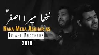 Tejani Brothers   Nana Mera Asghar (as)   Muharram 2018 / 1440